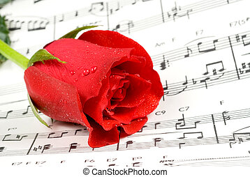 Music rose - Red rose rests on piano sheet music