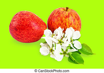 Red apples with flowers