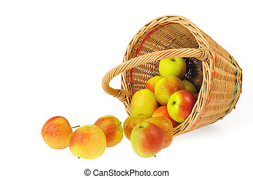 Fresh apples spilling out of basket - isolated on white...