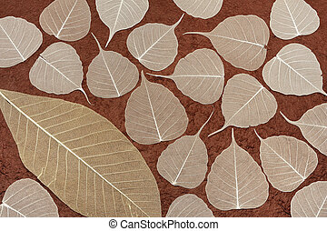 Skeletal leaves over brown handmade paper - background