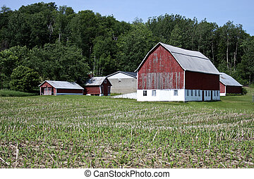 vintage red barn and farm