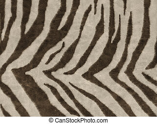 Animals skins textures - African animal skin texture