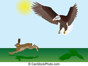 Eagle and the Hare