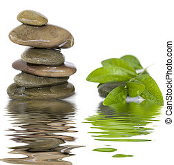 balanced stones - balanced spa stones with green plant and...