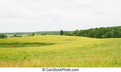 rural landscape, panorama