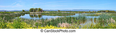 Klamath Falls wildlife, OR - National wildlife refuge...
