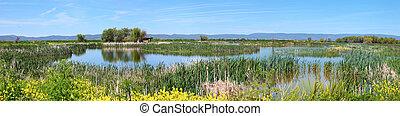 Klamath Falls wildlife, OR. - National wildlife refuge &...