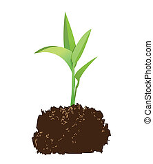 seedling - illustration of a seedling with soil, vector...
