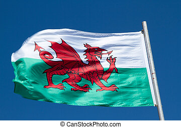 Fluttering Welsh flag. - Welsh flag with a red dragon on...