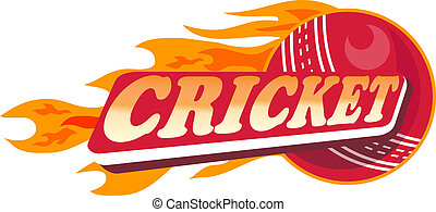 cricket sports ball flames - illustration of a cricket...
