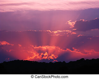 Vibrant and colorful purple sunset with silhouette of...