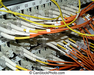 Data connections - fiber cables connected with a san switch