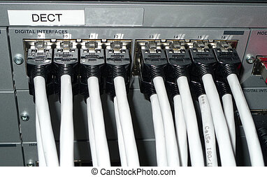 Network connection - network cables connected to a...