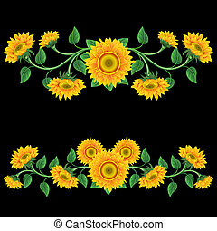 Sunflowers - Yellow sunflowers on the black background...