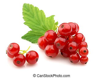 Red Currant close up