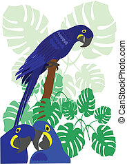 Blue Macaw Parrot Vector - Blue macaws with tropical plants...