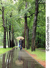 Man on bicycle in the rain with umbrella