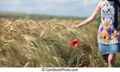 Woman in wheat field - young woman in wheat field