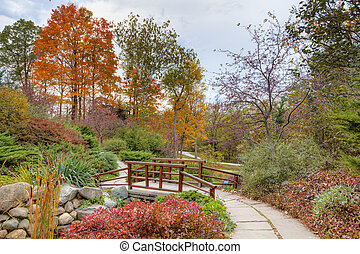 Fall in the park - Beautiful fall scenery in the one of the...