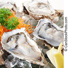 raw oysters - close-up on fresh and delicious raw oysters