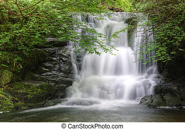 Lush green forest scene with long exposure blurred waterfall...