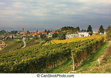 View on vineyard in northern Italy. - View on vineyard and...