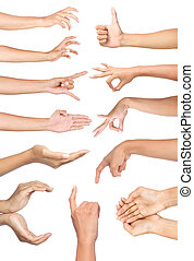 Set of many different hands gesture
