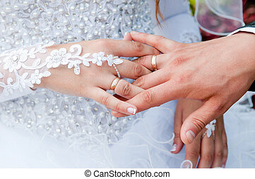 Hands with wedding rings gold - Hand of the groom and the...