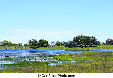Spring Vernal Pool in Santa Rosa Plateau Ecological Reserve...