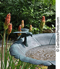 Bird Bath - A bird bath in a flower garden.