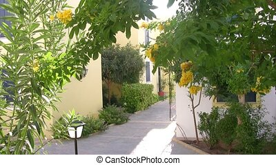 Small street in resort city - Small street with blossoming...