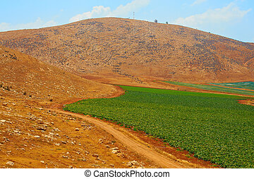 colinas,  samaria