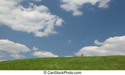 Lady walking on meadow - lady walking on meadow towards to...