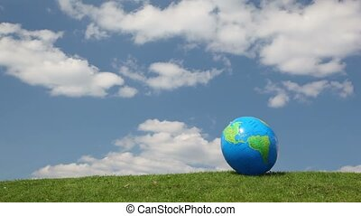 Globe looking ball waving by wind on grass