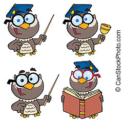 Owl Teacher-Vector Collection