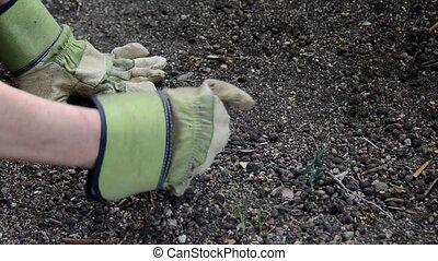 gloves  - gardening with gloves
