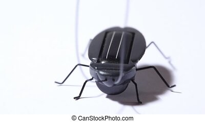 toy black beetle with solar battery vibrating
