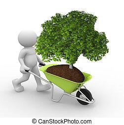 Green tree in wheelbarrow - 3d people - human character and...
