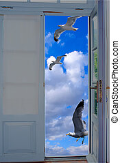 Seagulls flying on blue sky through an old traditional door on Santorini island, Greece