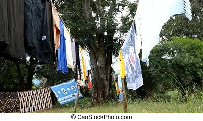 clothing - garment to dry