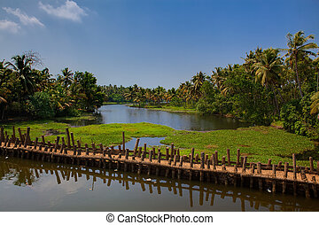 backwaters of cochin in Kerala state india
