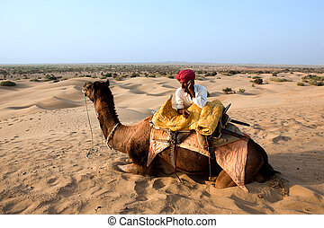 bedouin and his camel