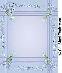 lavender border - an illustration of a lavender flower...