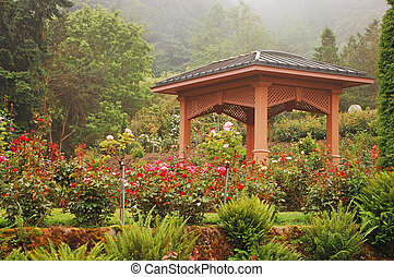 Rose garden gazebo - Gazebo in rose garden on misty morning
