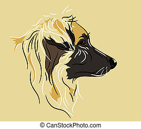 Shepherd Mix Dog in Profile