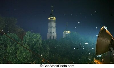 many insects flying in light of street lamp, orthodoxal...
