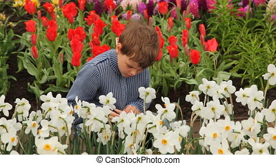 Little boy sits on footpath near flowerbeds