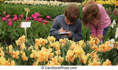 Boy and girl sit on footpath near flowerbeds - little boy...