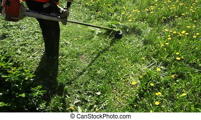 Worker mows grass manual lawnmower - worker mows green grass...