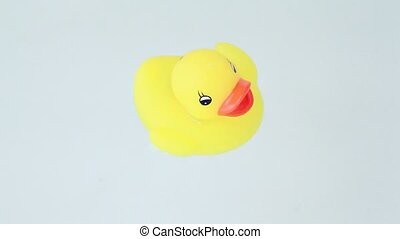 Closeup of duckling with color lights flashes floats water -...